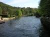 20110409-Borghetto-il fiume Mincio