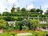 Isola bella - Giardini (3)