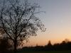 20121116-tramonto-7