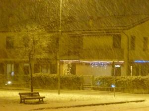 Winter2014_1