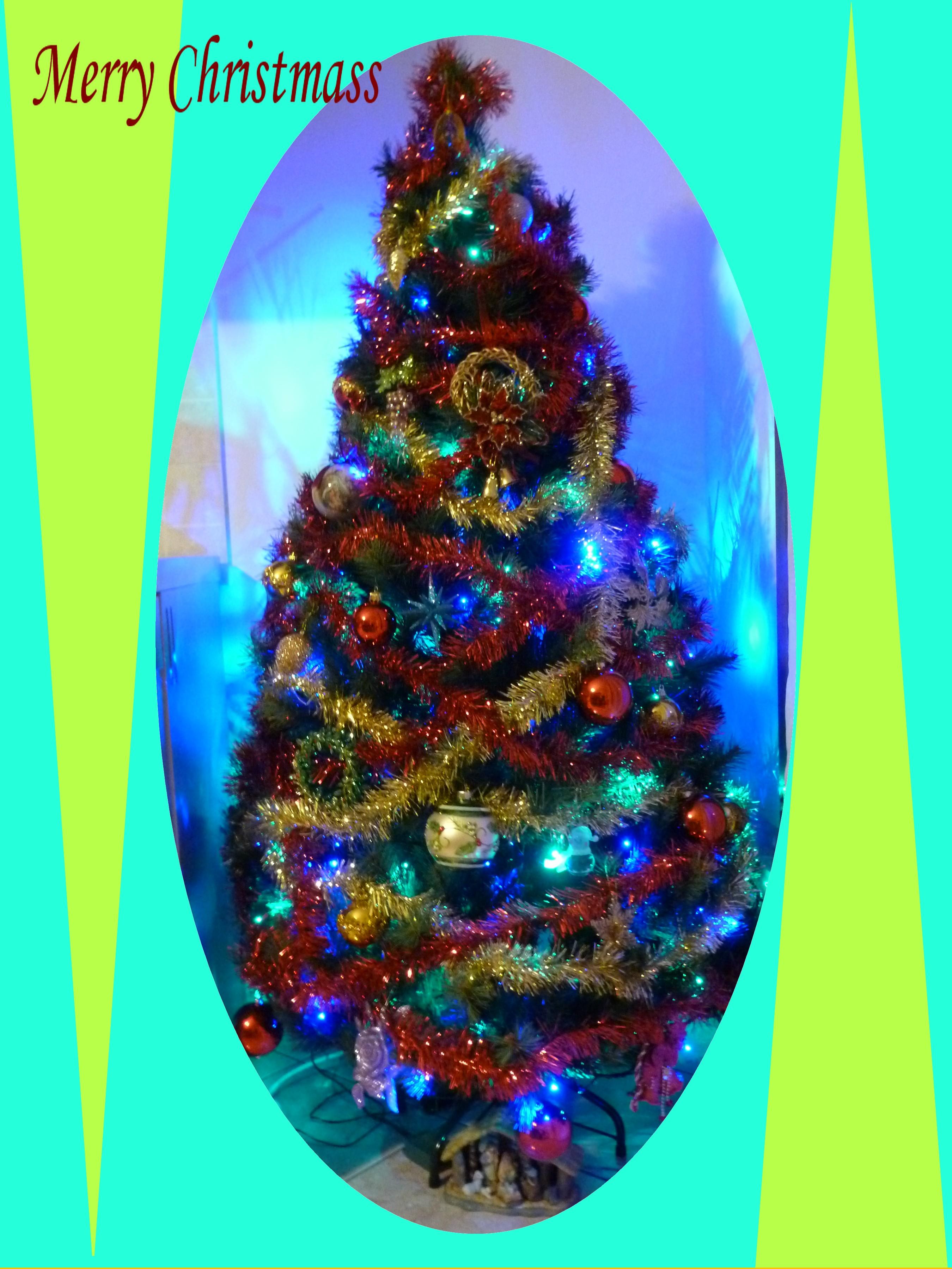 albero-di-natale_1