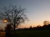 Cerea - Tramonto sul Brusà