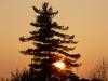 20121115-tramonto-a-legnago-2
