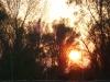 20121116-tramonto-1