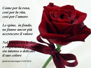 Come la rosa