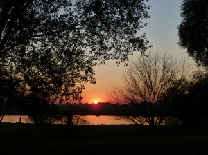 sunset_20141024-(10)
